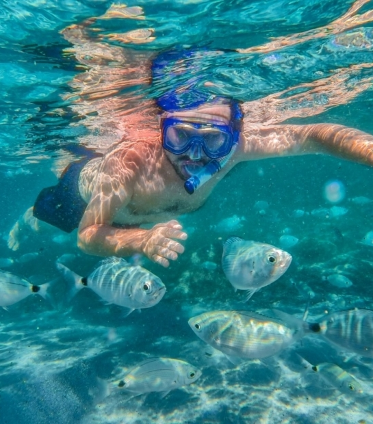 Plongée et snorkeling