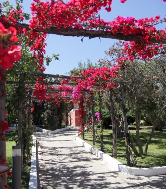 Giardini nelle aree comuni