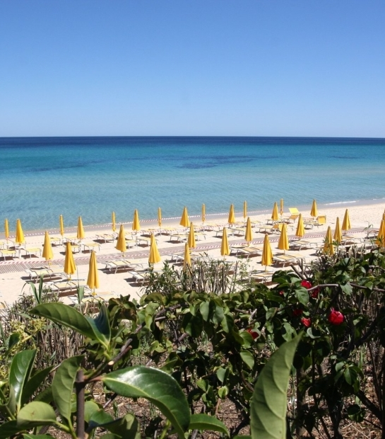Vista Spiaggia dell'Hotel Free Beach con stabilimento balneare